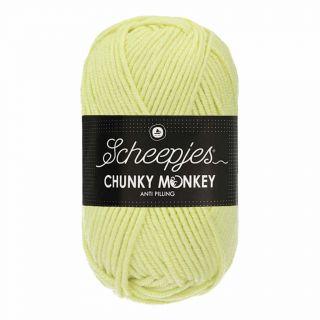 Scheepjes Chunky Monkey Mint 1020
