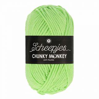 Scheepjes Chunky Monkey Pistachio 1316