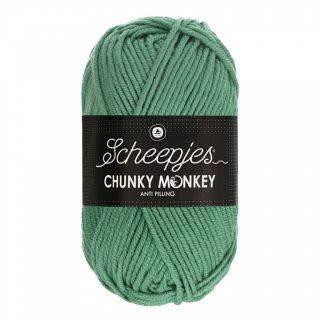 Scheepjes Chunky Monkey Eucalyptus 1725