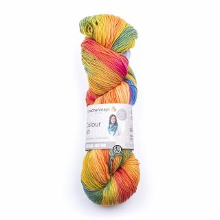 Schachenmayr Colour Up - Bloemenweide 00081