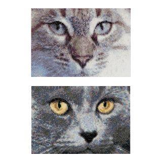 Borduurpakket Katten Jack en Luna  - Thea Gouverneur