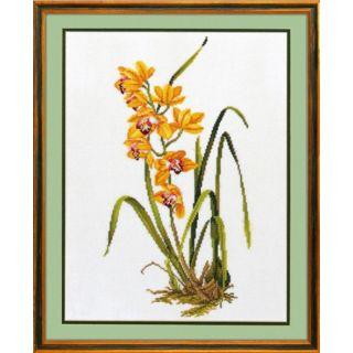 Eva Rosenstand Gele Orchidee