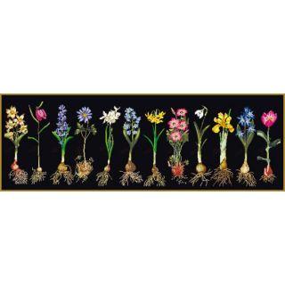 Borduurpakket Voorjaarsbloemen Black Collection - Thea Gouverneur