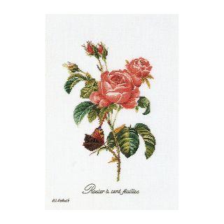 Borduurpakket Roos Redoute Aida - Thea Gouverneur