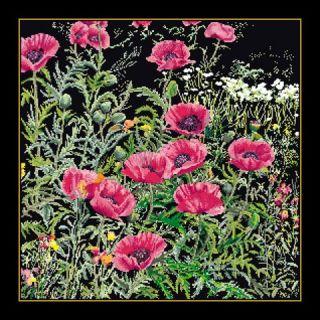 Borduurpakket Roze Papavers Black Collection - Thea Gouverneur