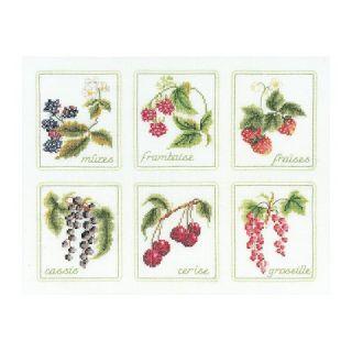 Borduurpakket 6x Fruit Linnen - Thea Gouverneur