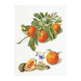 Borduurpakket Sinaasappels en Mandarijnen Aida - Thea Gouverneur
