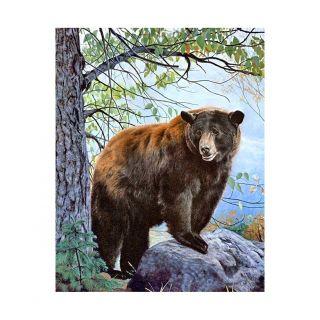 Diamond Painting Brown Bear - Wizardi