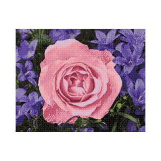 Diamond Painting Garden Rose - Wizardi