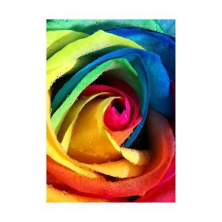Diamond Painting Rainbow Rose - Wizardi