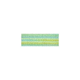 DMC 4060 Mouliné Color Variations borduurgaren